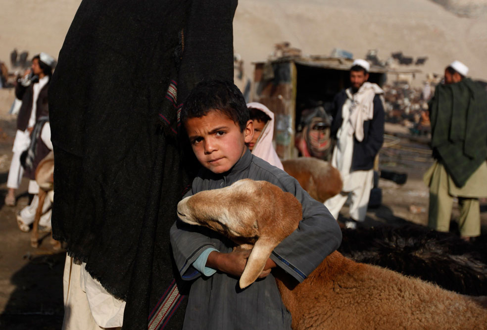 овцы на скотном рынке в Кабуле, фото Курбан-байрам