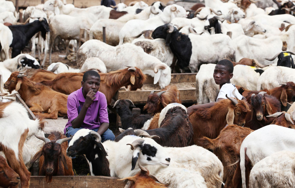 Дети на рынке в Лагосе, Нигерия, фото Курбан-байрам