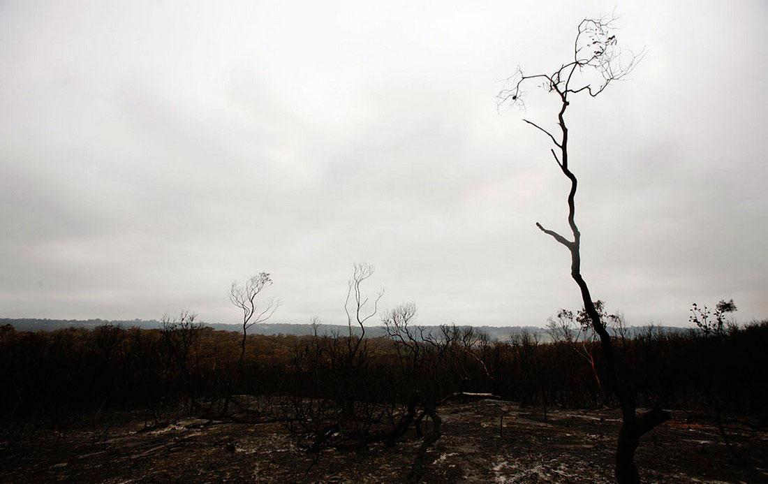 Сожженная дотла долина, фото из Австралии