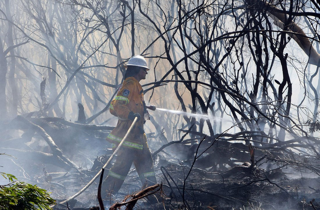 сдержать лесной пожар к северу от Сиднея, фото из Австралии
