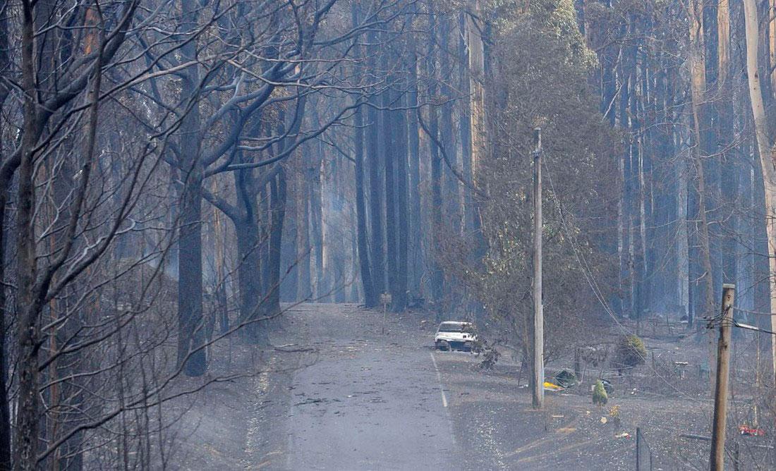 выгоревшие машины и дома, фото из Австралии