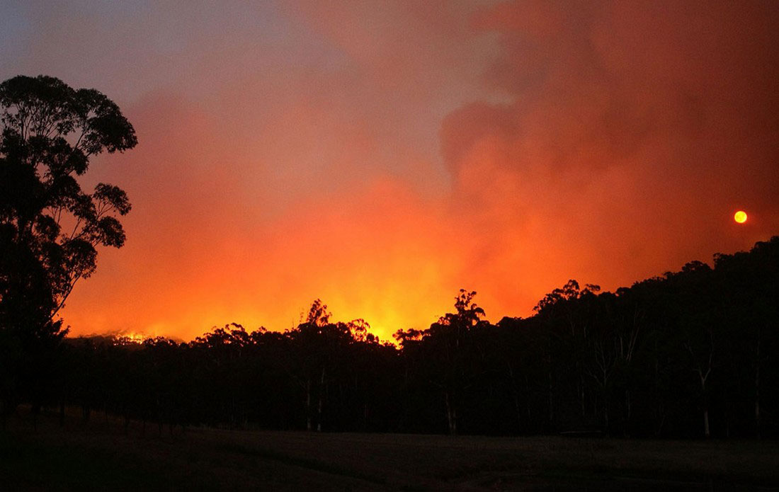 Лесные пожары распространяются, фото из Австралии