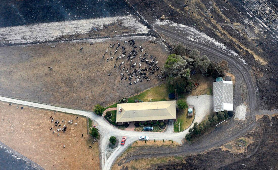 Выгорели тысячи гектаров сельхозугодий и лесов, фото из Австралии