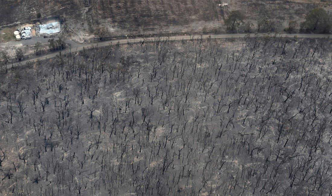 леса и города в огне, фото из Австралии
