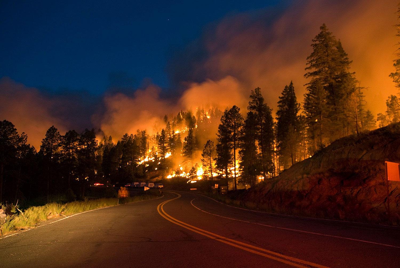 Горит национальный лес Линкольн, фото лесных пожаров