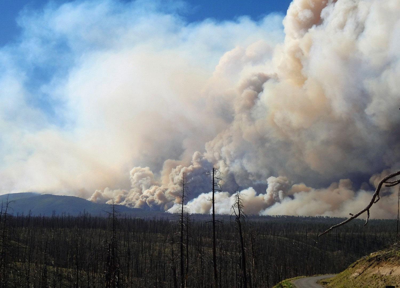 Лесной пожар в заповеднике Гила, фото США