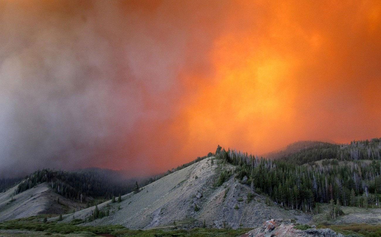 Пожар в лесу Бриджер-Тетон, фото