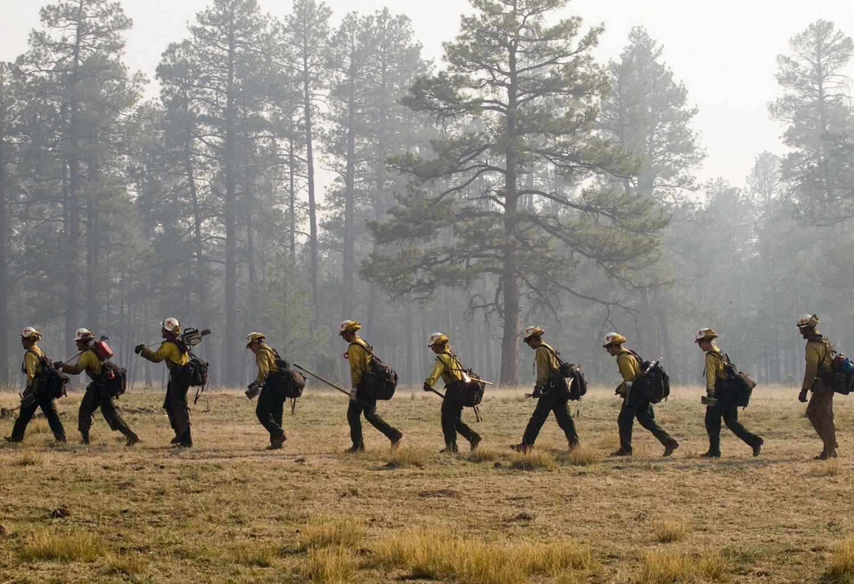 Пожарники тушат заповедник США, фото лесных пожаров