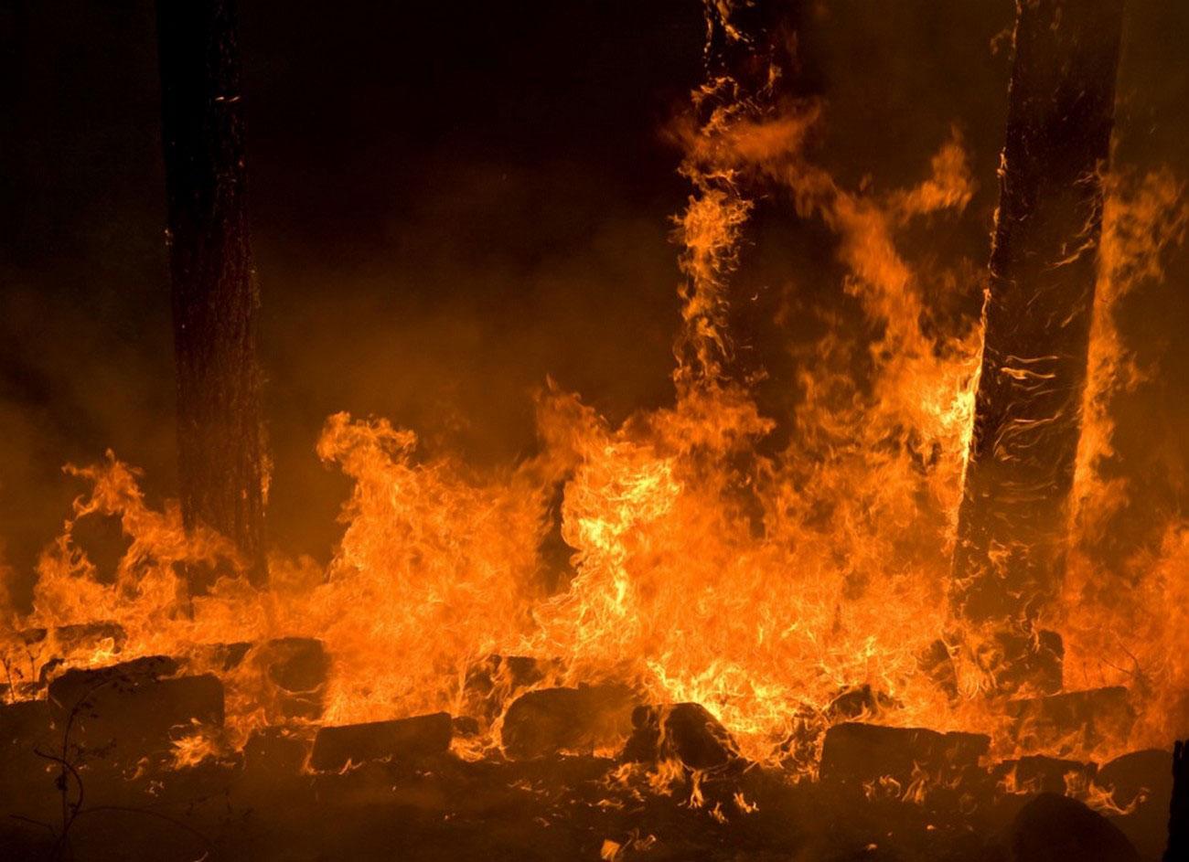 огонь в национальном заповеднике Прескотт, фото