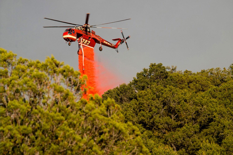леса Нью-Мексико, фото лесных пожаров