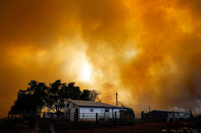 в окрестностях Лапорта, фото лесных пожаров
