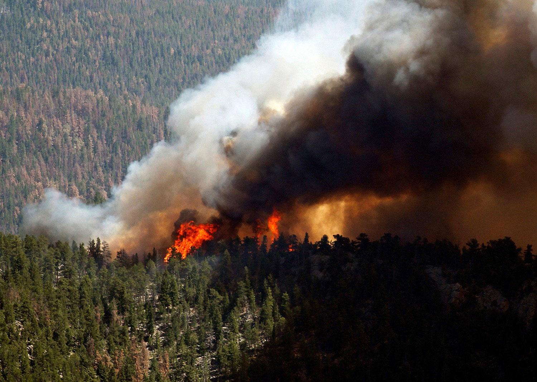 Лесные пожары в штатах Колорадо, фото летнего пейзажа