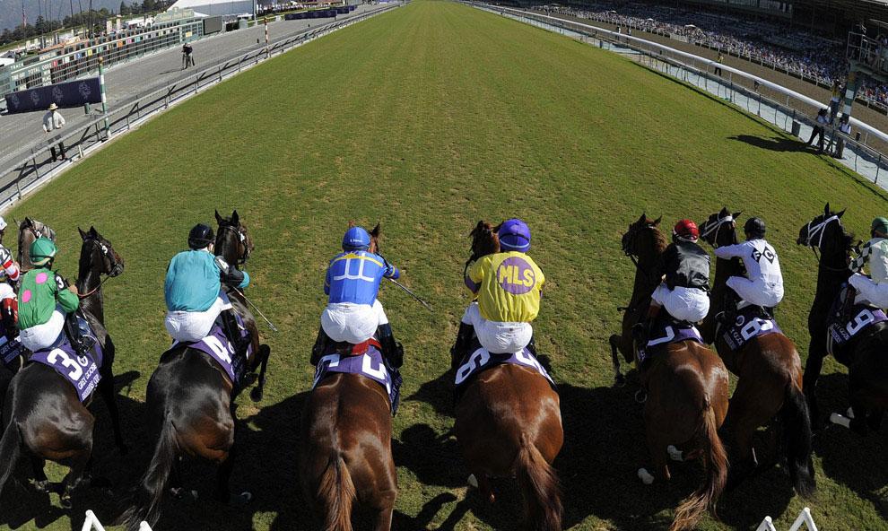 Лошади с жокеями, фото