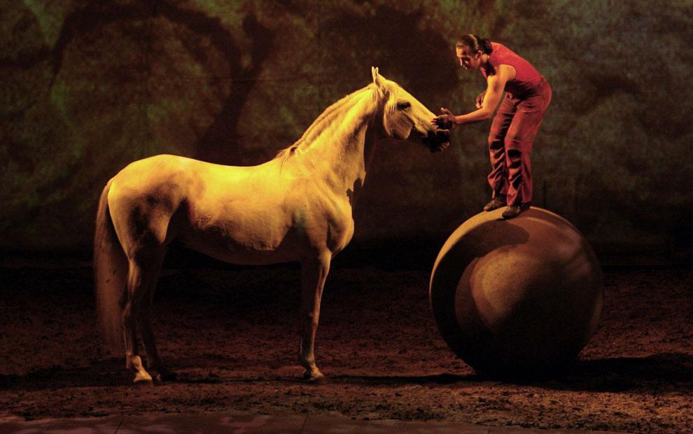 конная выставка в Лиссабоне, фото