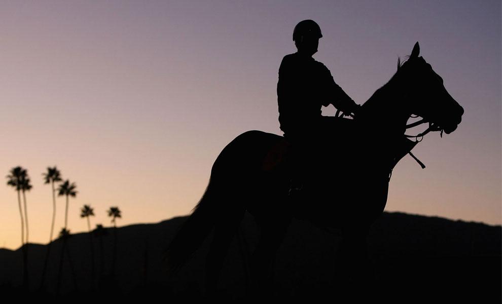 всадник на коне, фото