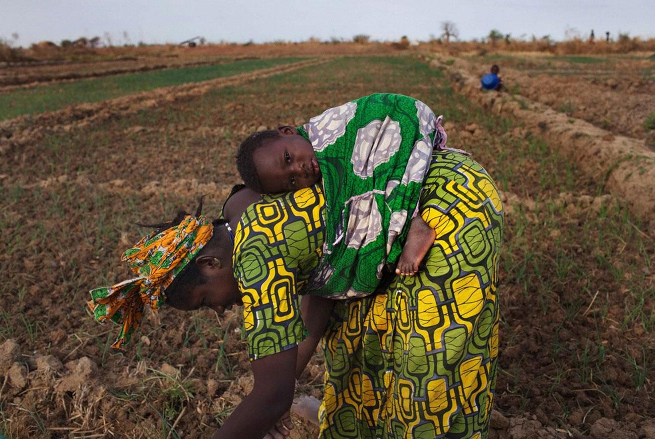 работа в поле, фото Мали