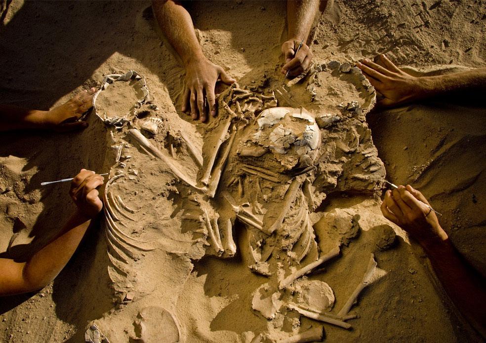 скелеты матери с детьми в пустыне, фото