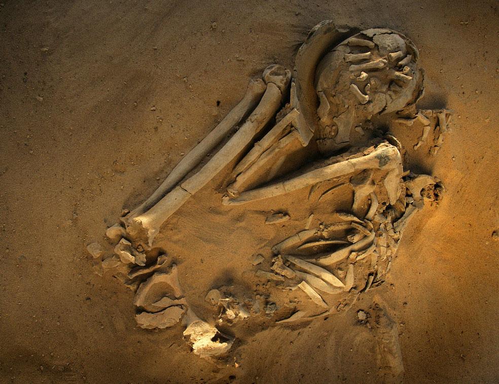 скелет мужчины тенерийца с головой в горшке в пустыне, фото