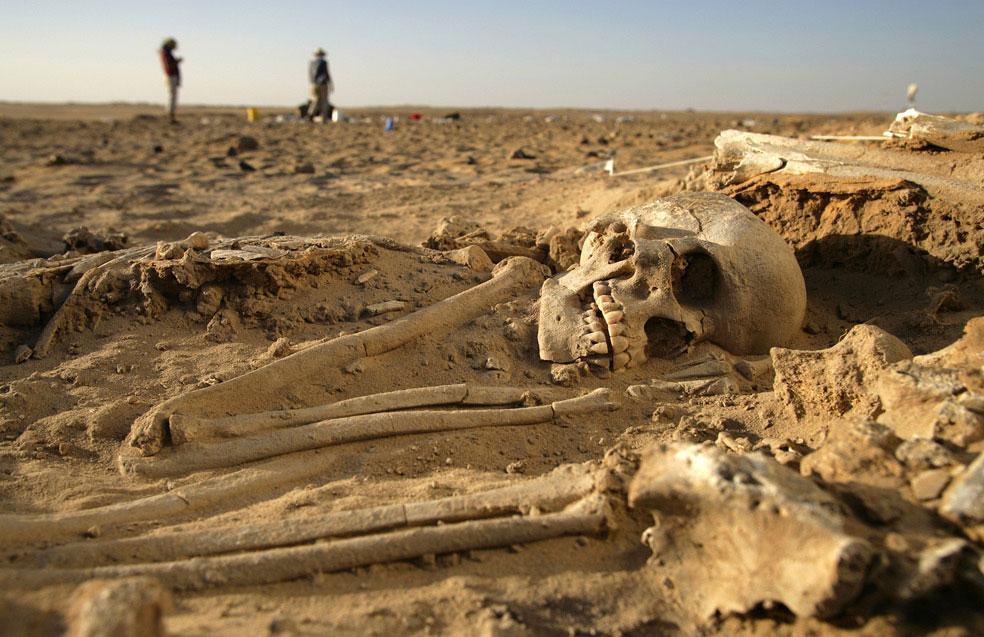 кладбище размером с два футбольных поля в пустыне, фото
