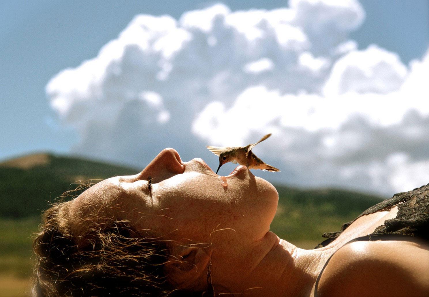 Животные птицы пейзажи на national geographic майский