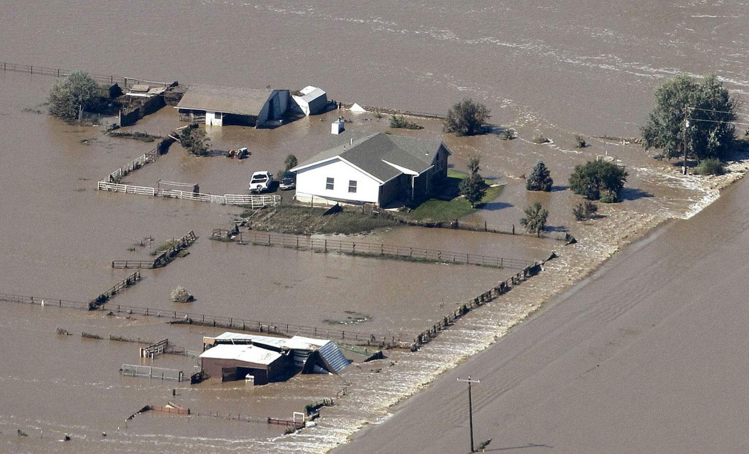 ферма пострадала от наводнения