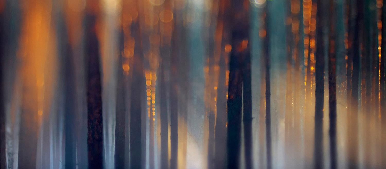 таяние льда во время густого тумана, фото
