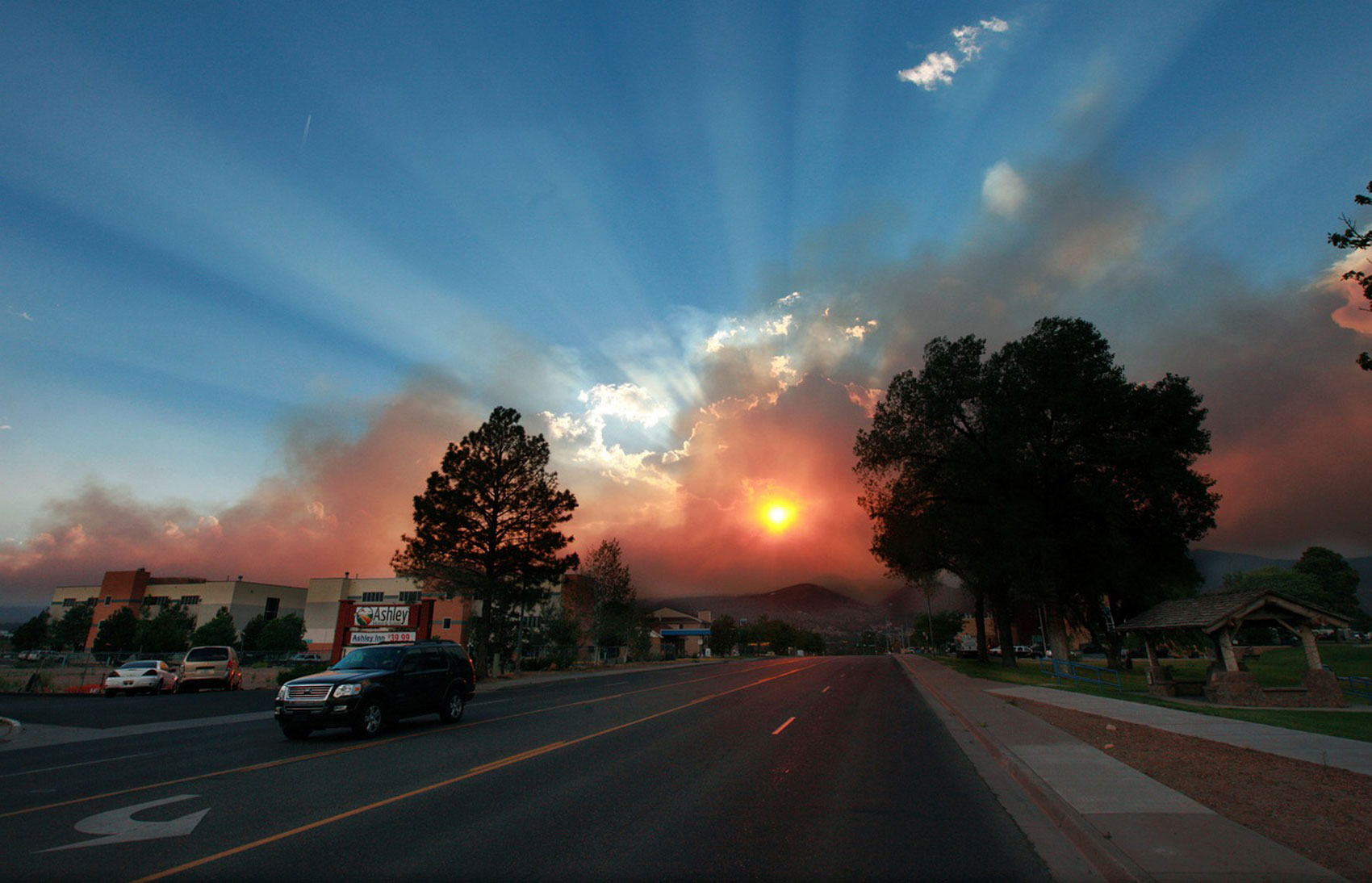 Лесные пожары, фото
