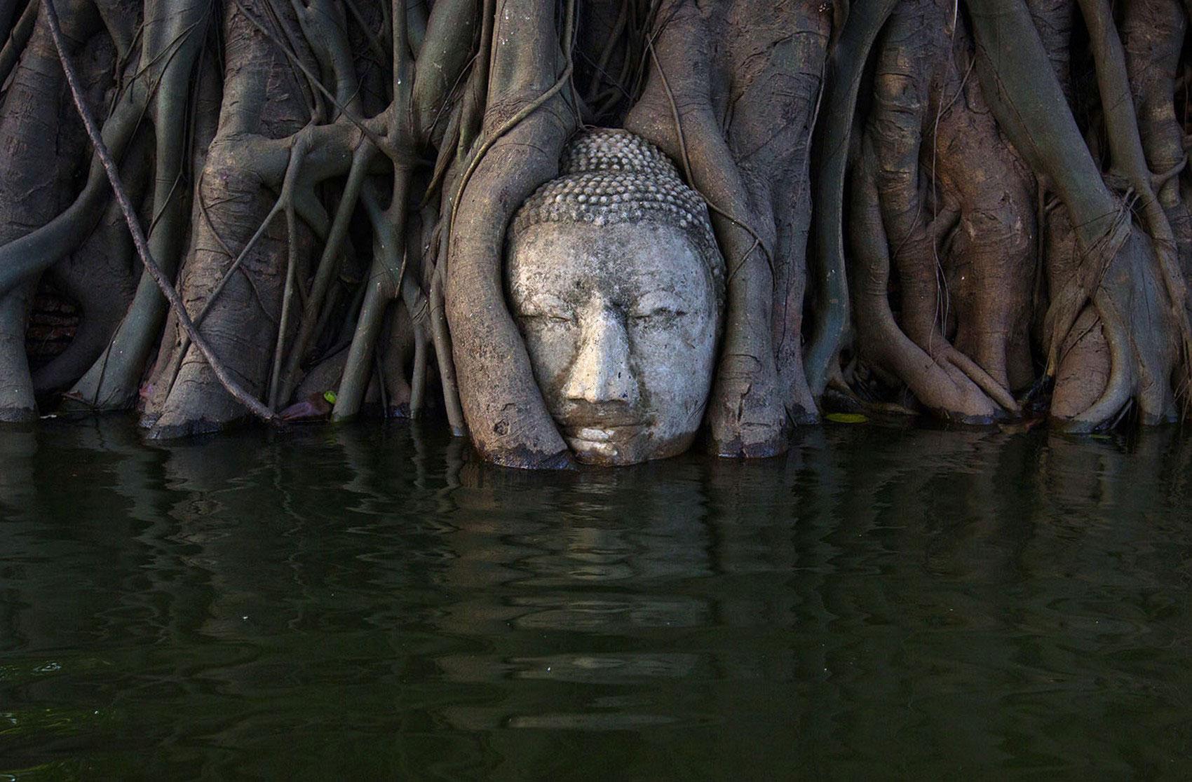 Голова Будды, фото