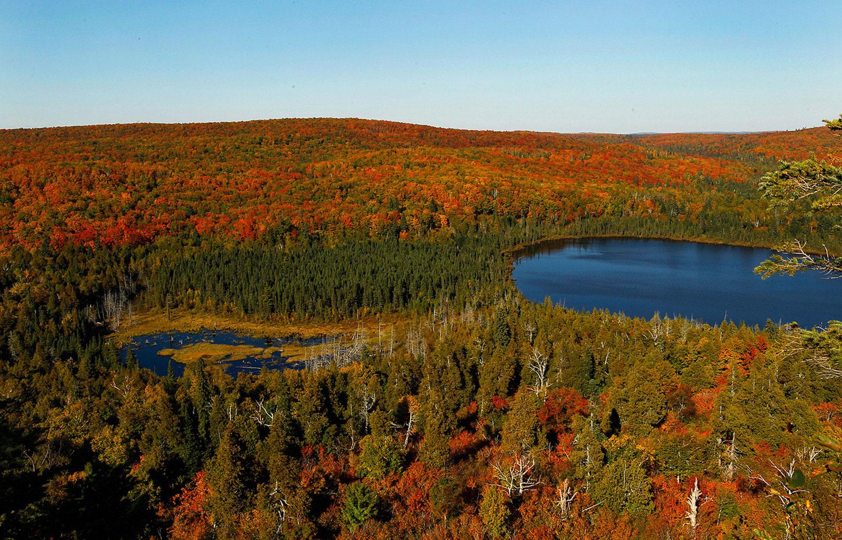 Золотая осень, фото