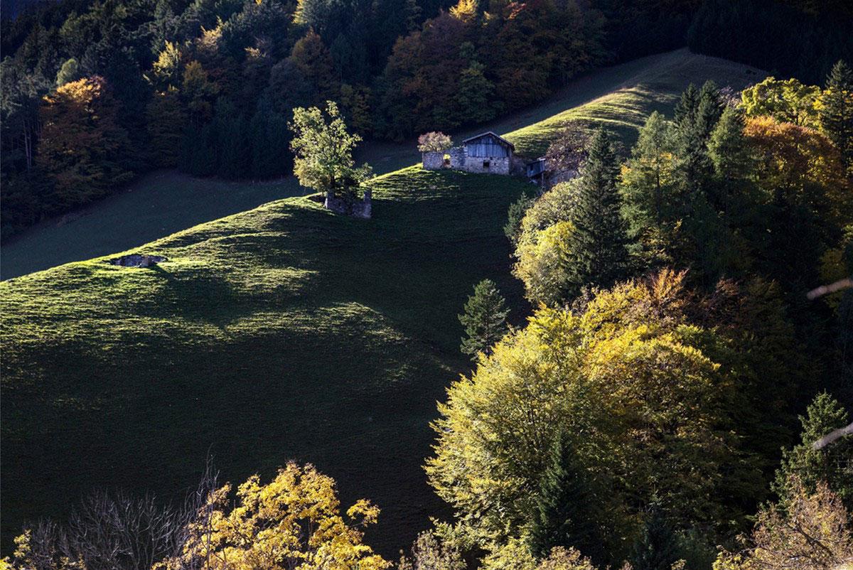домик на холме