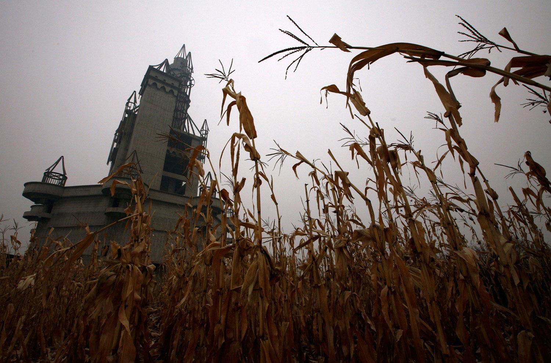 парк развлечений на кукурузном поле