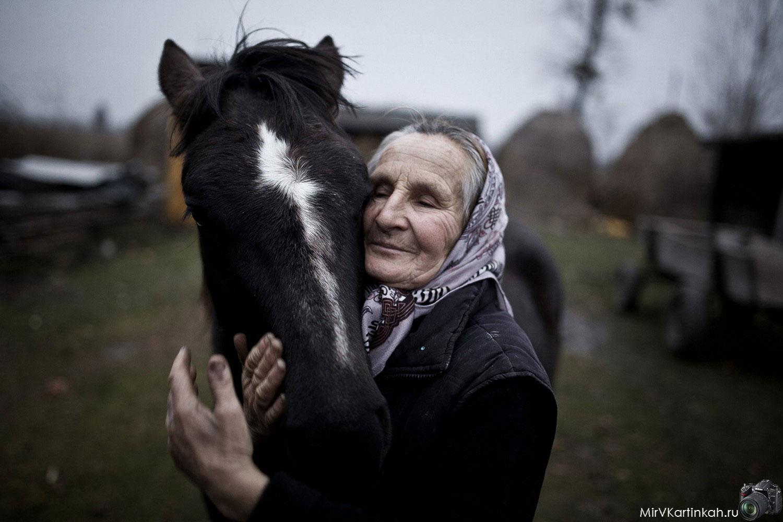 бабушка с лошадью
