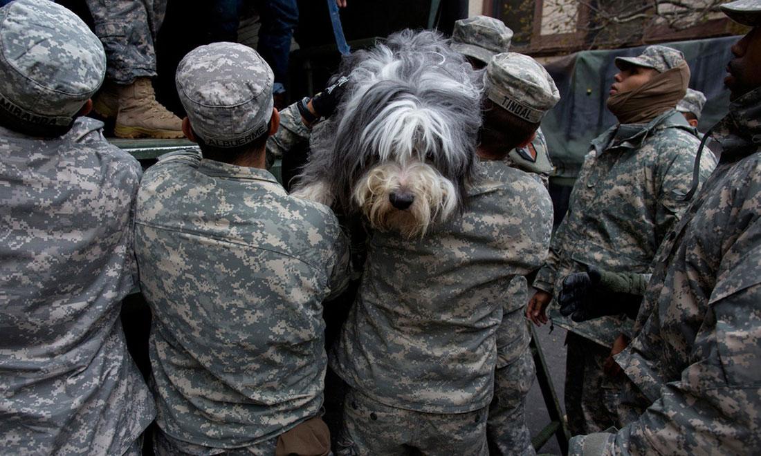 Солдаты Национальной гвардии помогают пострадавшим, фото