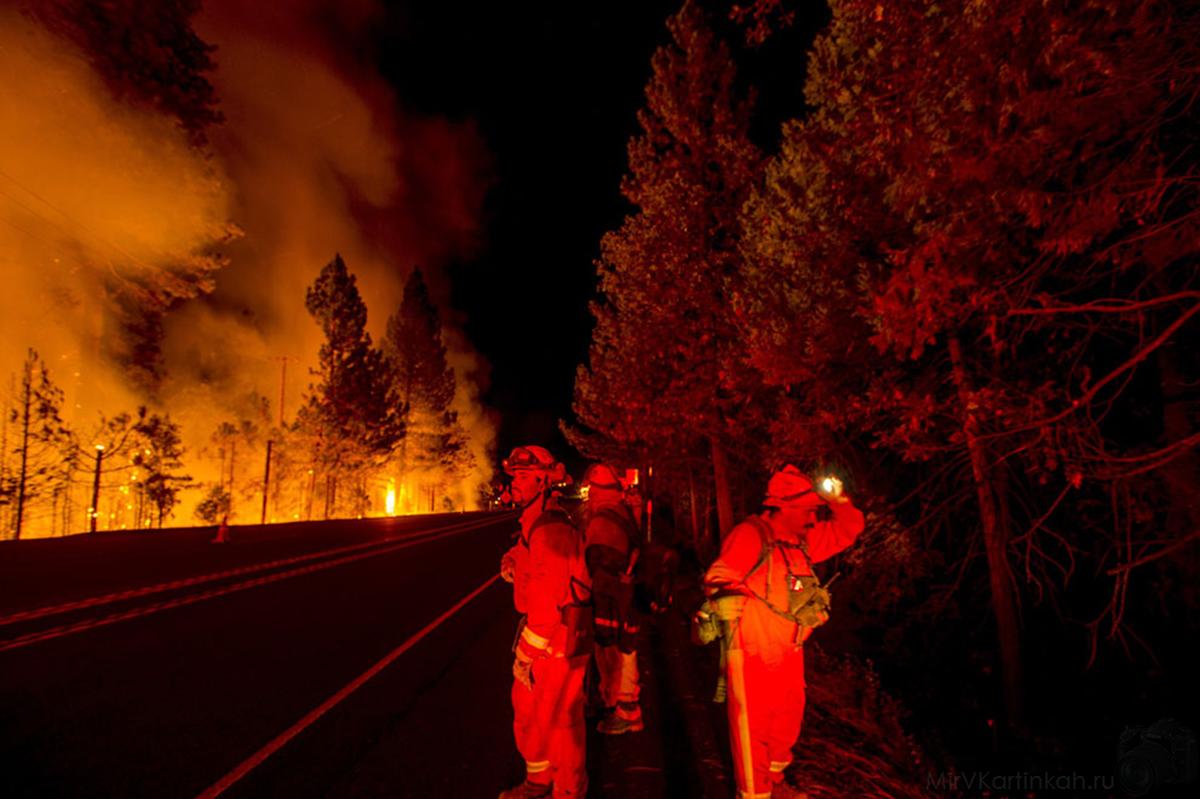 Пожарные сражаются с огнем