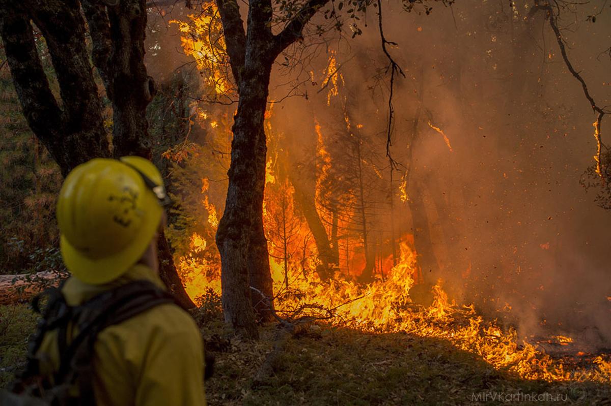 мужчина наблюдает за пожаром
