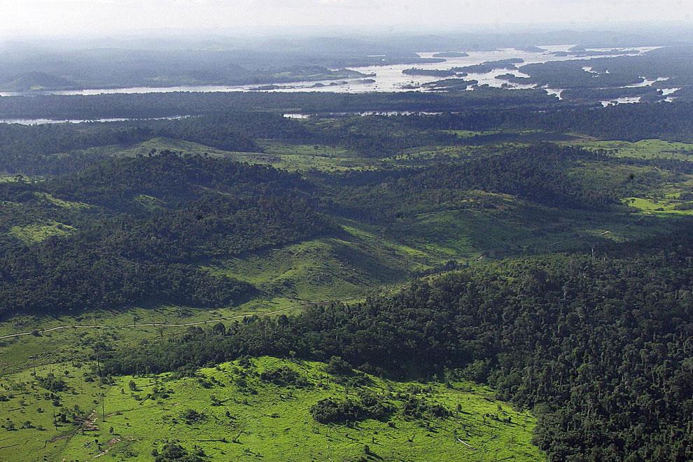 тропические леса Амазонки