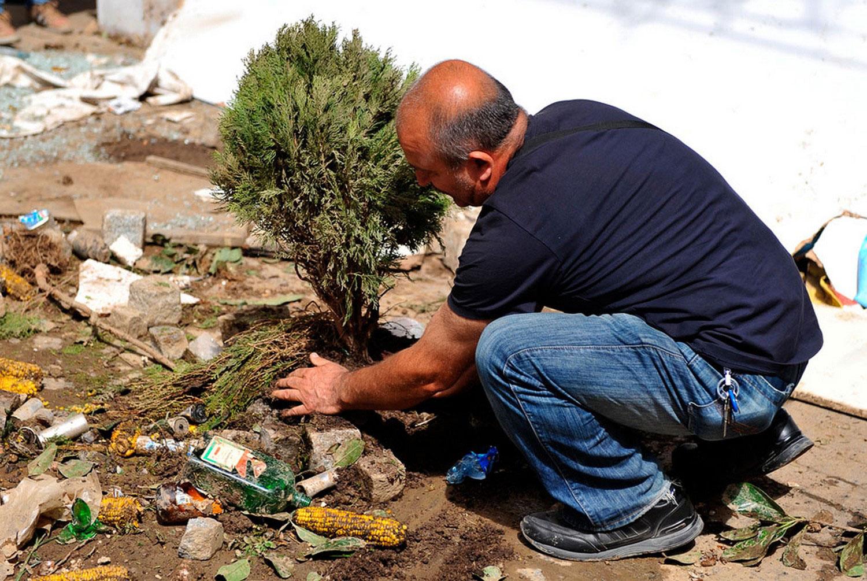 Мужчина сажает деревце