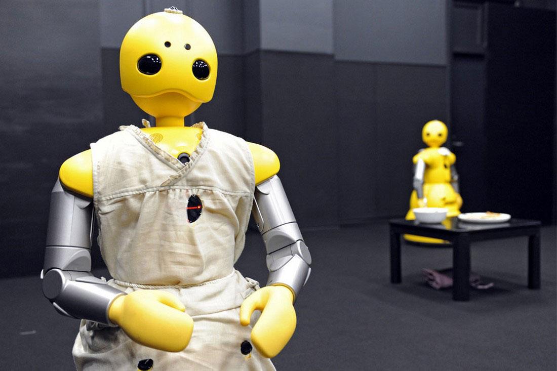 Роботы-гуманоиды Wakamaru, фото