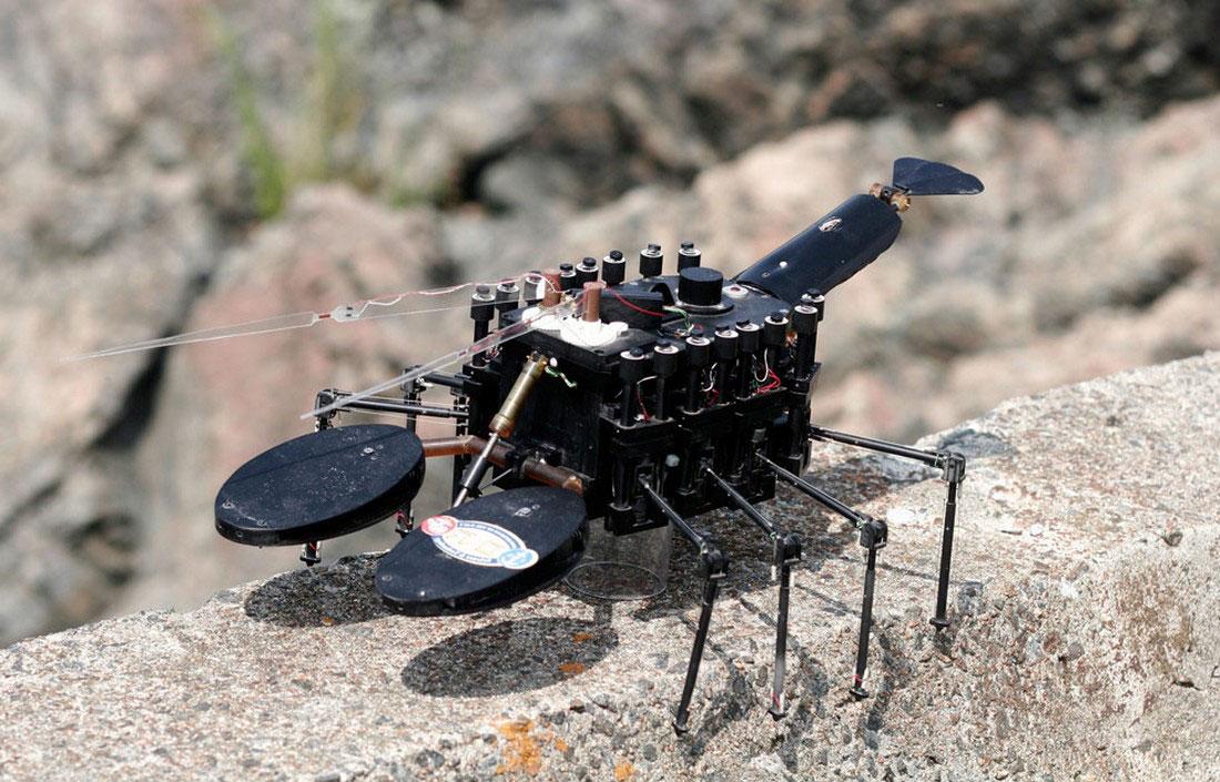 Биомиметический подводный робот, фото