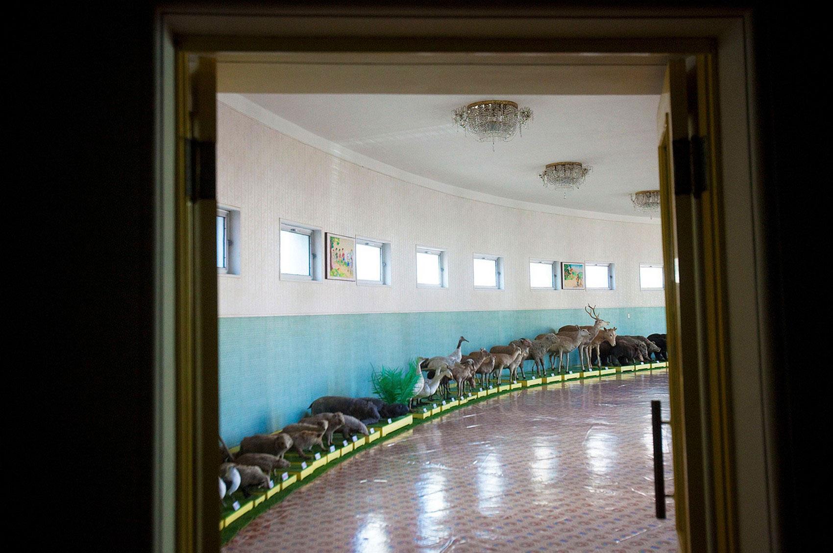 школа в Чангванге