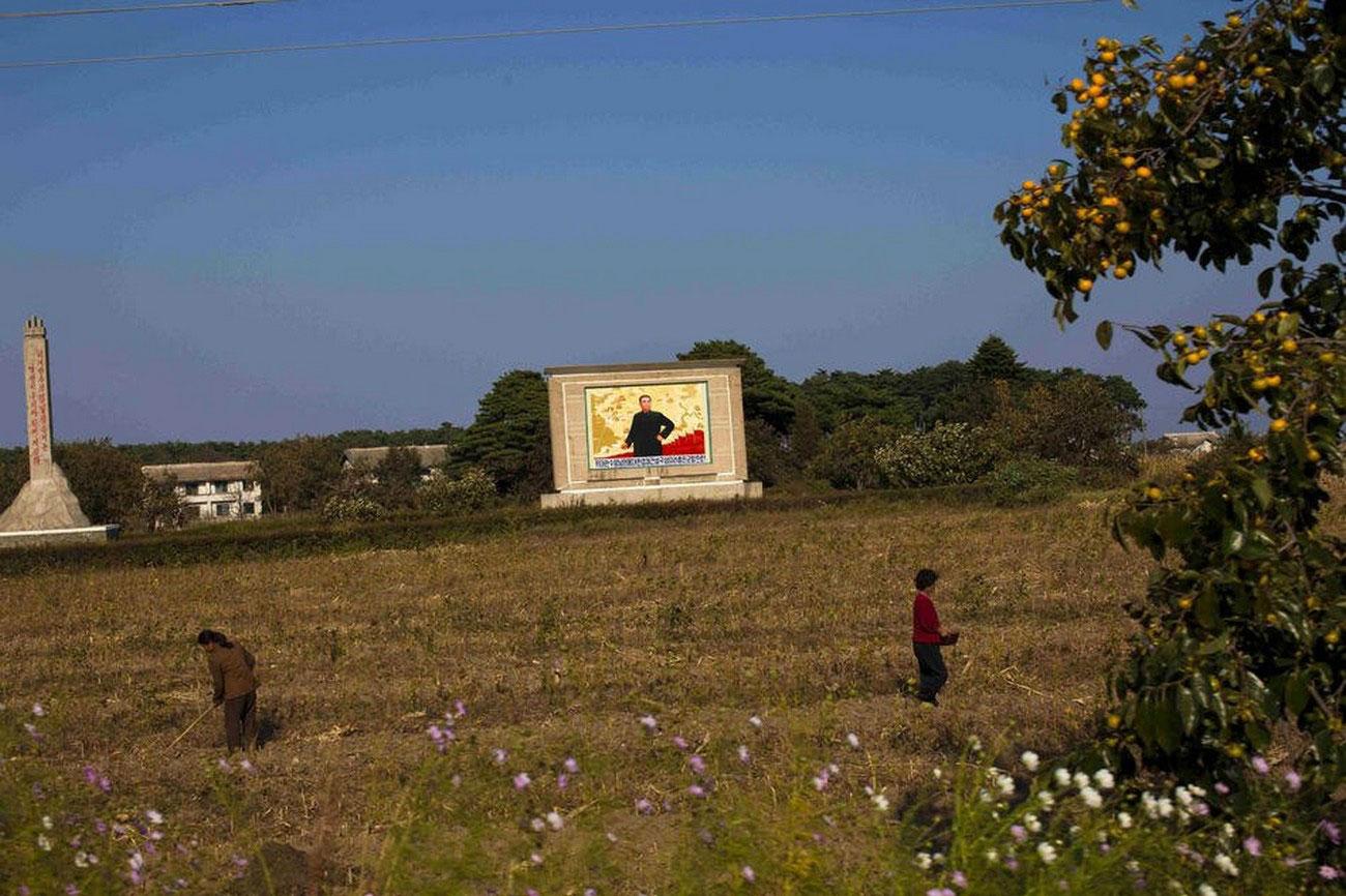 Портрет Ким Ир Сена в поле