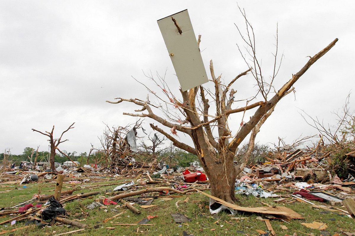 дверь повисла на дереве во время урагана