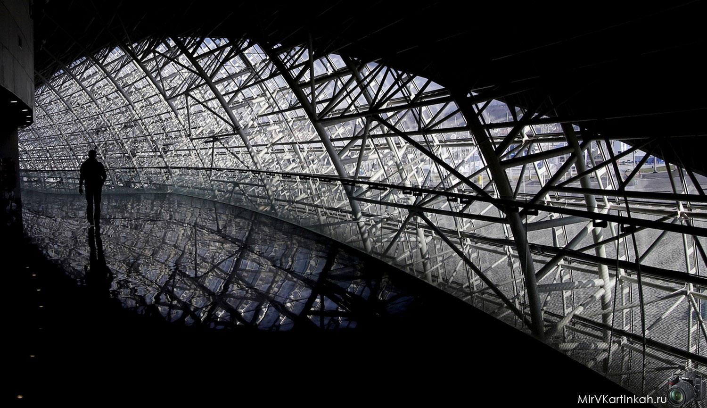 коридорам Ледового стадиона