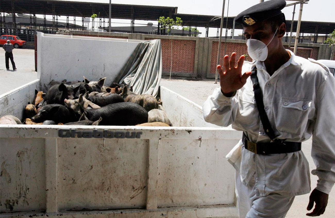 Египетский полицейский в маске из-за свиного гриппа