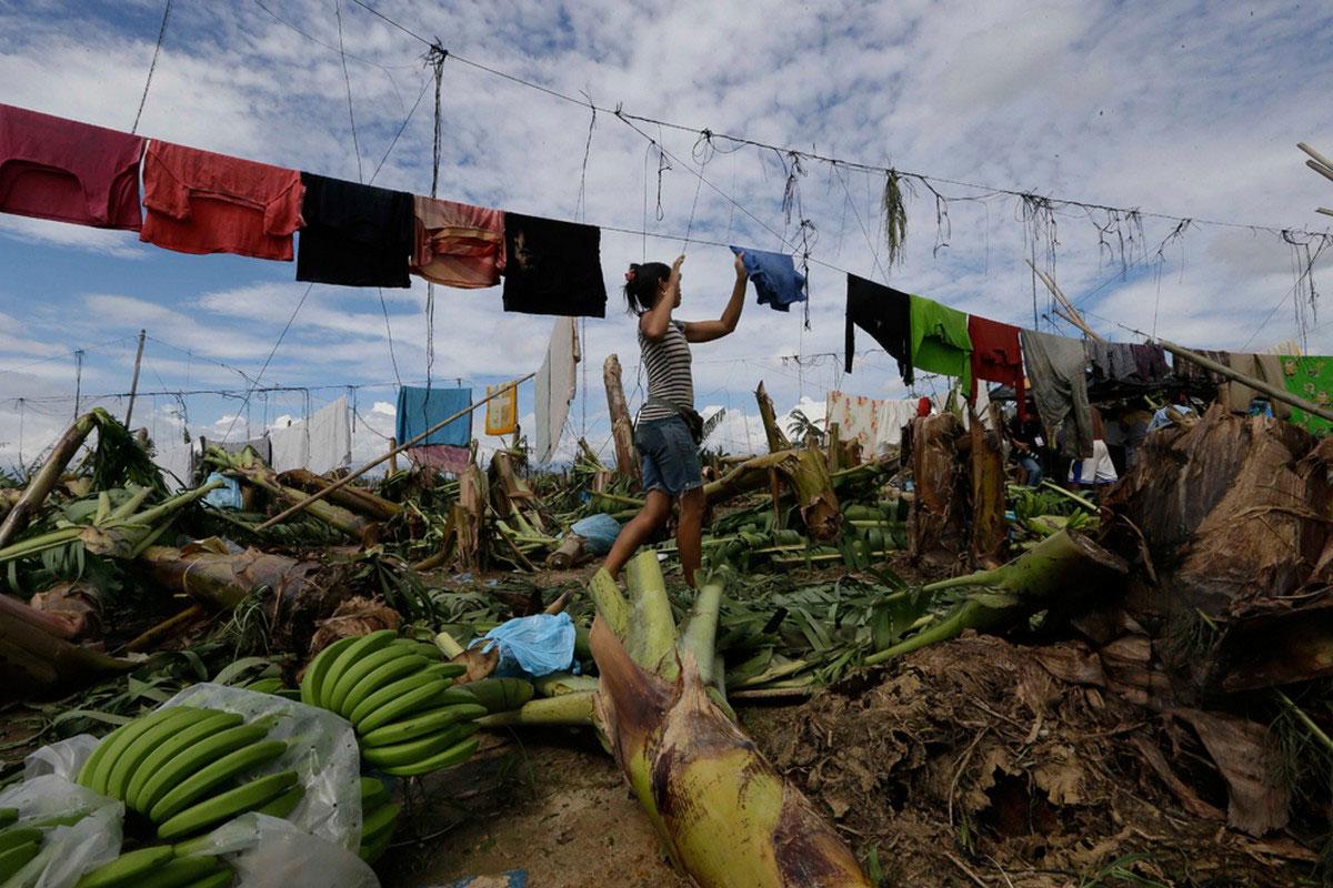 разруха в деревне после тайфуна в 2012 году