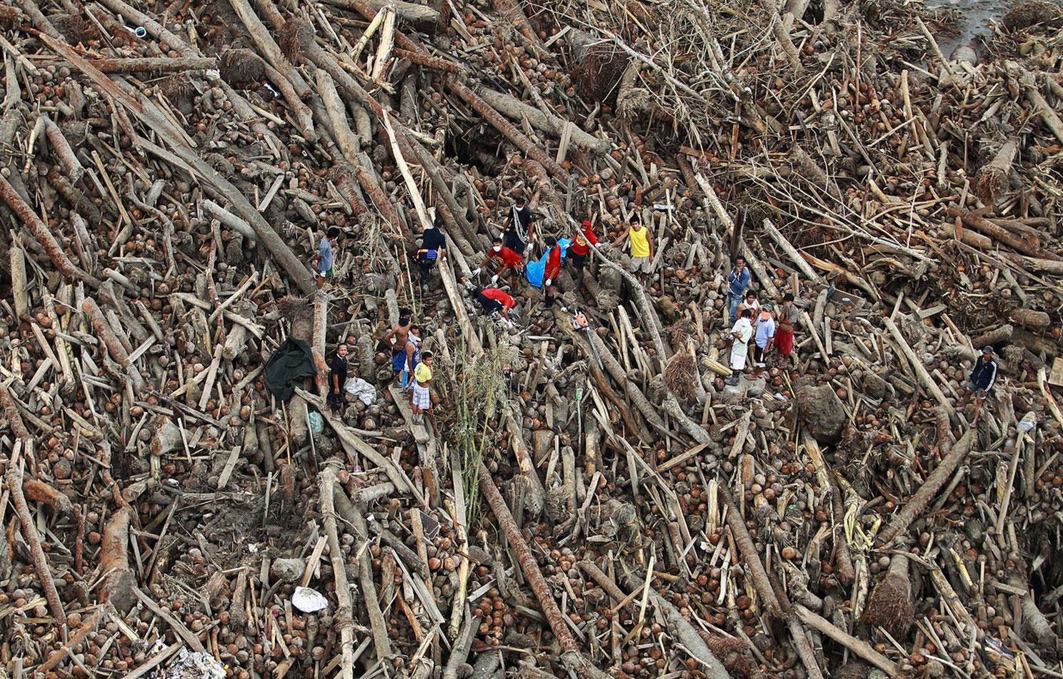 погибшие сельхозугодья Филиппин, фото