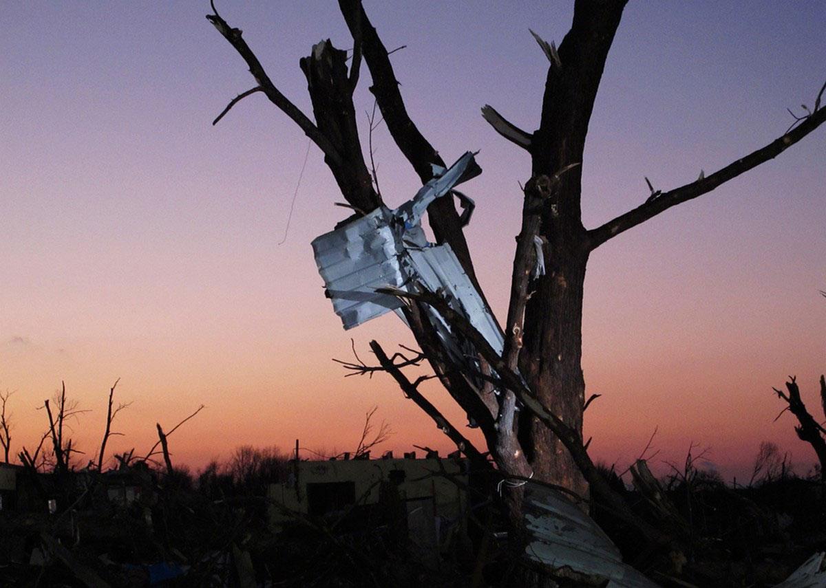 мусор на деревьях