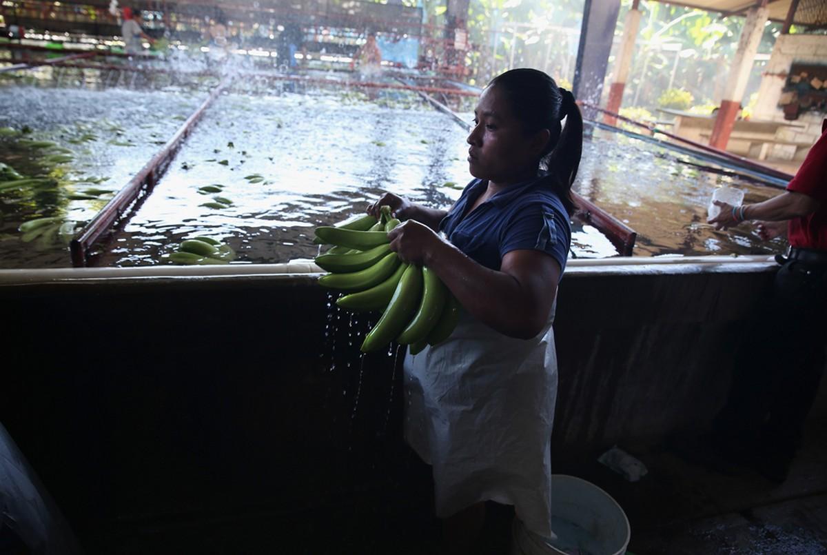 помывка бананов