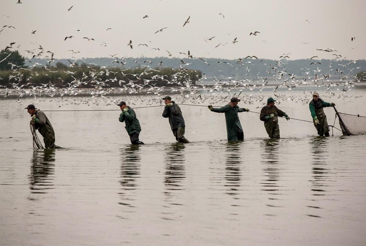 рыбаки с сетями