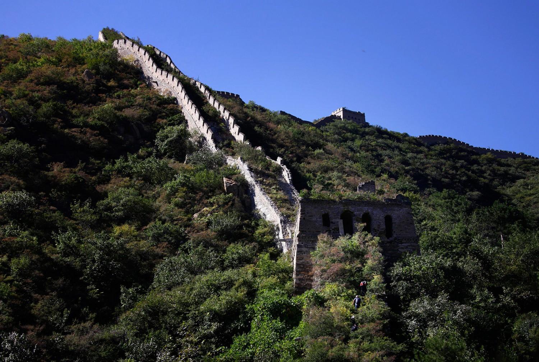 заросшая тропа к великой китайской стене, фото